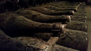 bottles aging in pommery