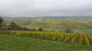 Sancerre - view