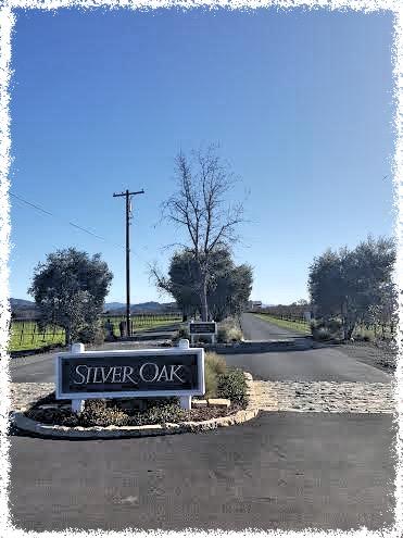 silver oak_Fotor