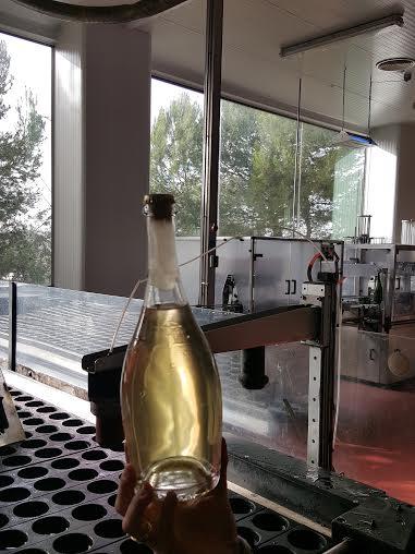 6 - frozen yeast neck of bottle ready for releasing
